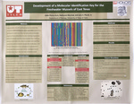 Development of a Molecular Identification Key for the Freshwater Mussels of East Texas